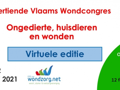 Dertiende Vlaams Wondcongres - Mis deze virtuele editie nietI